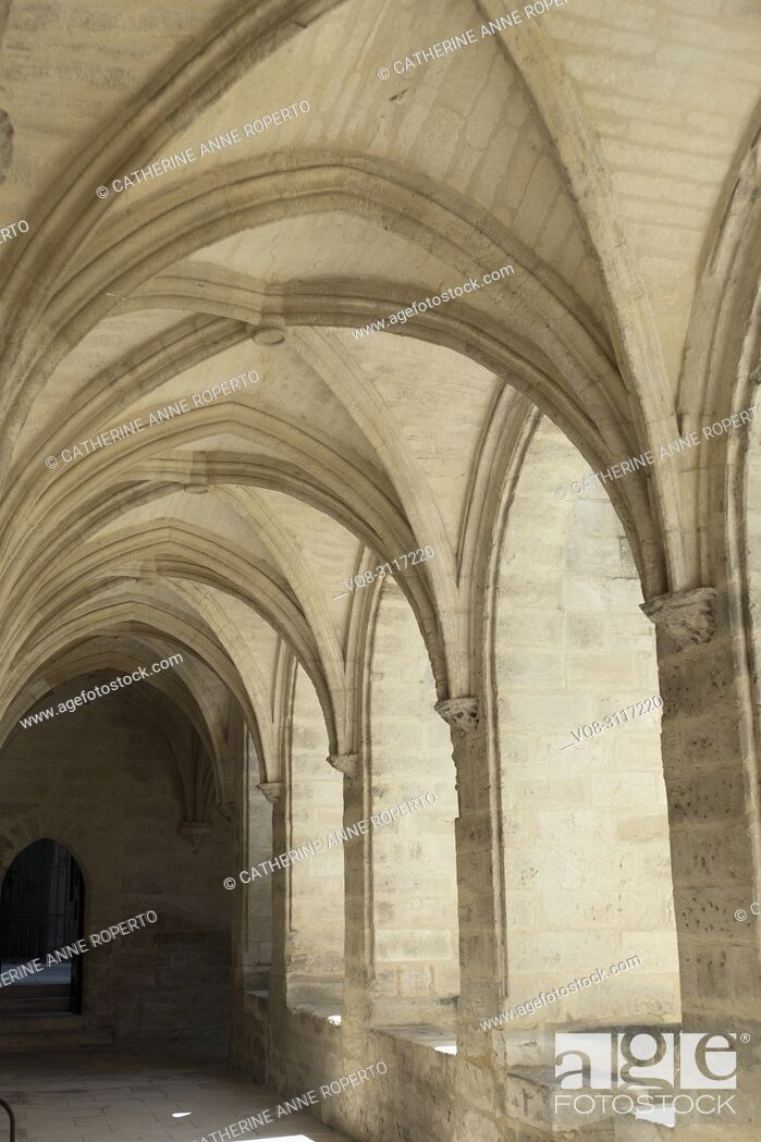 Imagen: Sun illuminating the repeating, ribbed arches and vaulting in warm stone hues in a cloister at Chartreuse Monastery, Villenueve-les-Avignon, Provnece, France.
