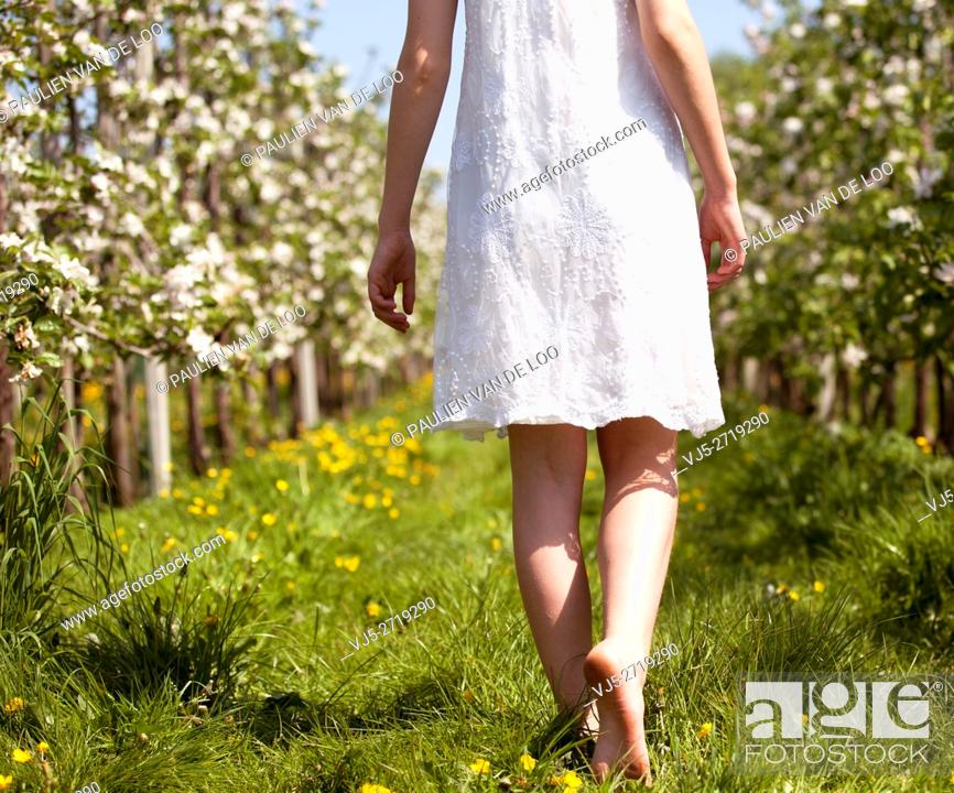 Stock Photo: Helmond, Netherlands, a lovely girl walks barefoot between blossom in an orchard.