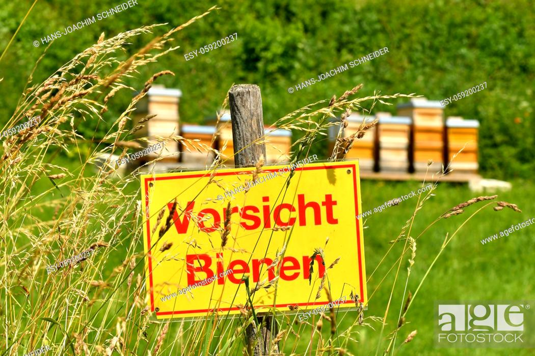 Stock Photo: warning sign bees in a meadow.