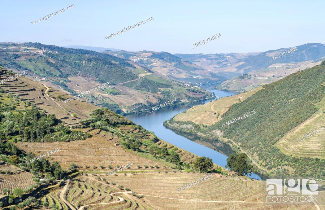 Stock Photo: Valley of river Douro near Valenca do Douro. The valley of river Douro. It is the wine growing area Alto Douro and listed as UNESCO World heritage.