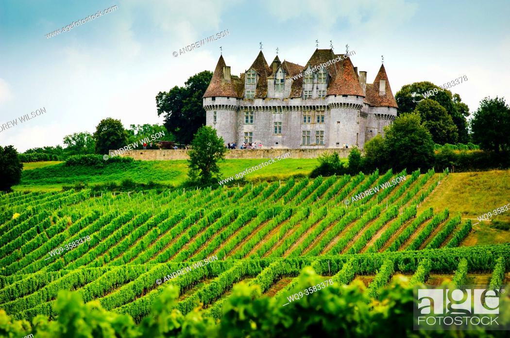 Stock Photo: Chateau overlooking vineyards on the Cotes de Duras, Lot et Garonne, Aquitaine, France.