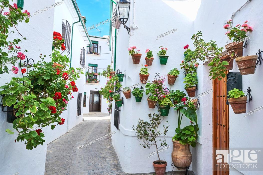 Stock Photo: Flowerpots in Barrio de la Villa (old quarter), Priego de Cordoba, Sierra de la Subbetica, Route of the Caliphate, Cordoba province, Andalusia, Spain.