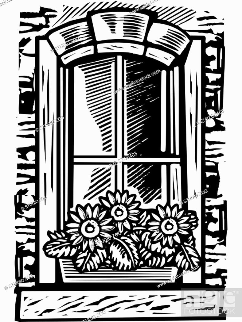 Stock Photo: Window with window box of flowers, black and white.