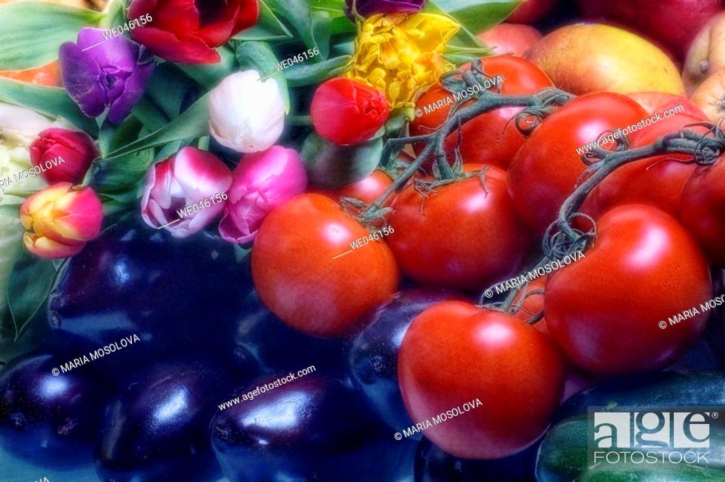 Stock Photo: Tulips (tulipa hybrid), Tomatoes (Solanum lycopersicon), Apples (Malus domestica), Squash (Cucurbita pepo), Eggplants (Solanum melongena).