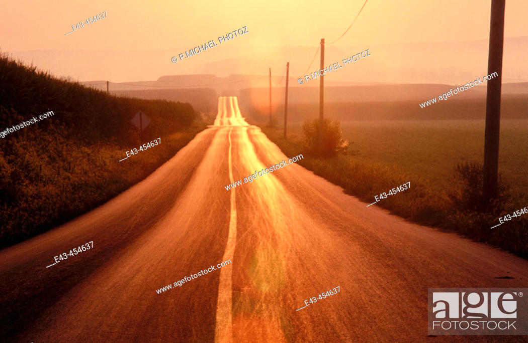 Stock Photo: Road, straight with telephone poles and wires with an orangish cast of the sun with mist.