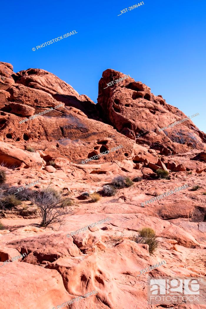 Stock Photo: Valley of Fire State Park, Nevada.