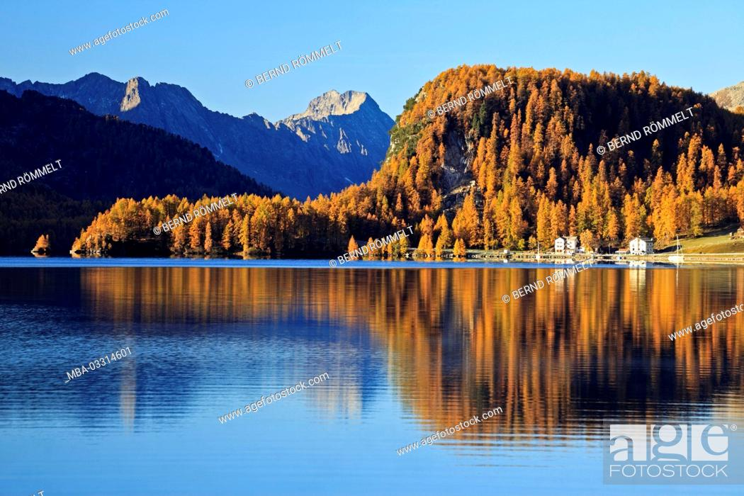 Stock Photo: Switzerland, Canton of Grisons, the Engadine, Oberengadin, Silsersee,.