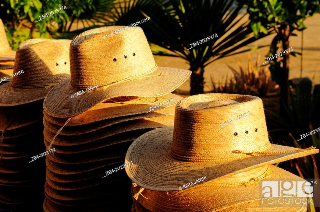 Stock Photo: Todos Santos, Baja California, Mexico, North America.