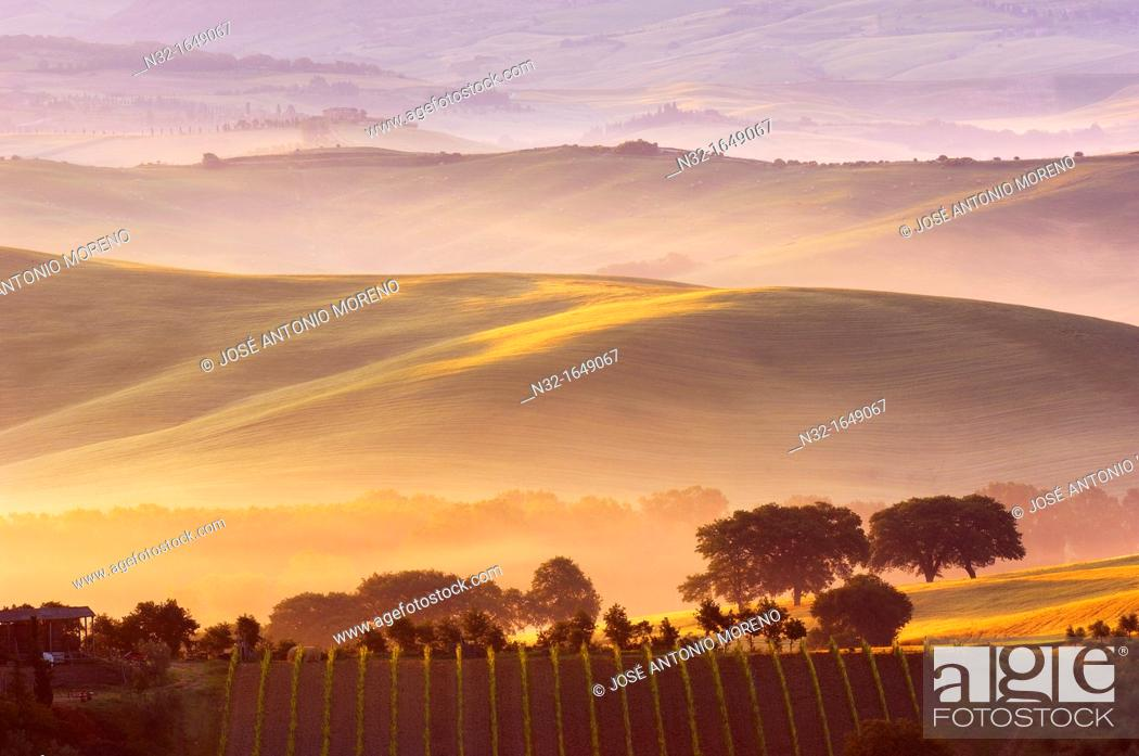 Stock Photo: Val d'Orcia at dawn with morning fog, San Quirico d'Orcia, Tuscany landscape, UNESCO World Heritage Site, Siena Province, Tuscany, Italy, Europe.