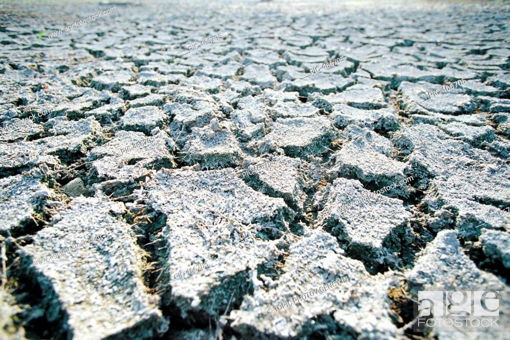 Stock Photo: Drought.