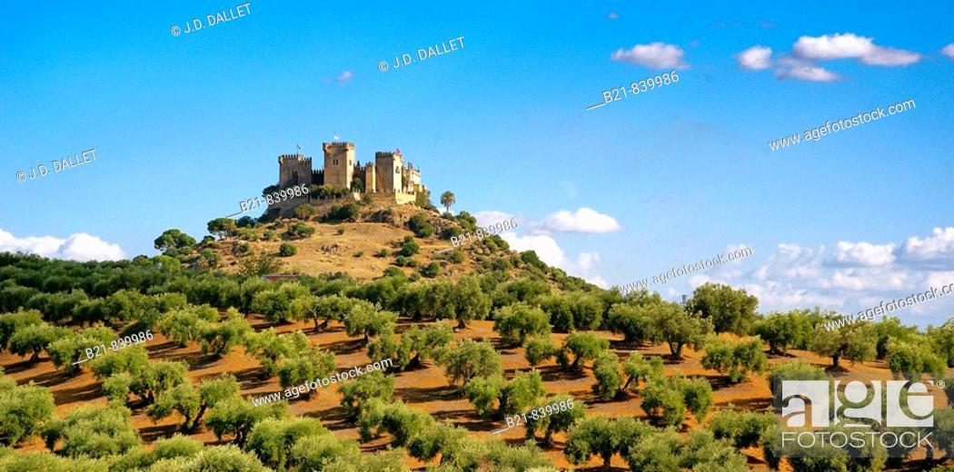 Stock Photo: Castle, Almodovar del Rio. Cordoba province, Andalusia, Spain.