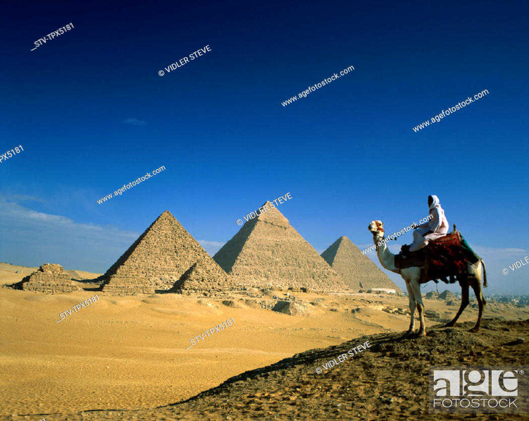 Stock Photo: Camel, Egypt, Africa, Giza, Holiday, Landmark, Man, Pyramids, Tourism, Travel, Vacation,.