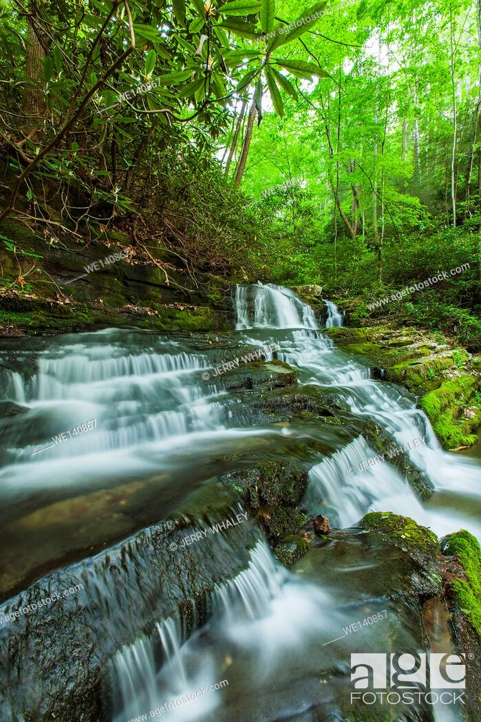 Imagen: Waterfalls on Rhododendron Creek in Greenbrier, Great Smoky Mountains National Park , TN.