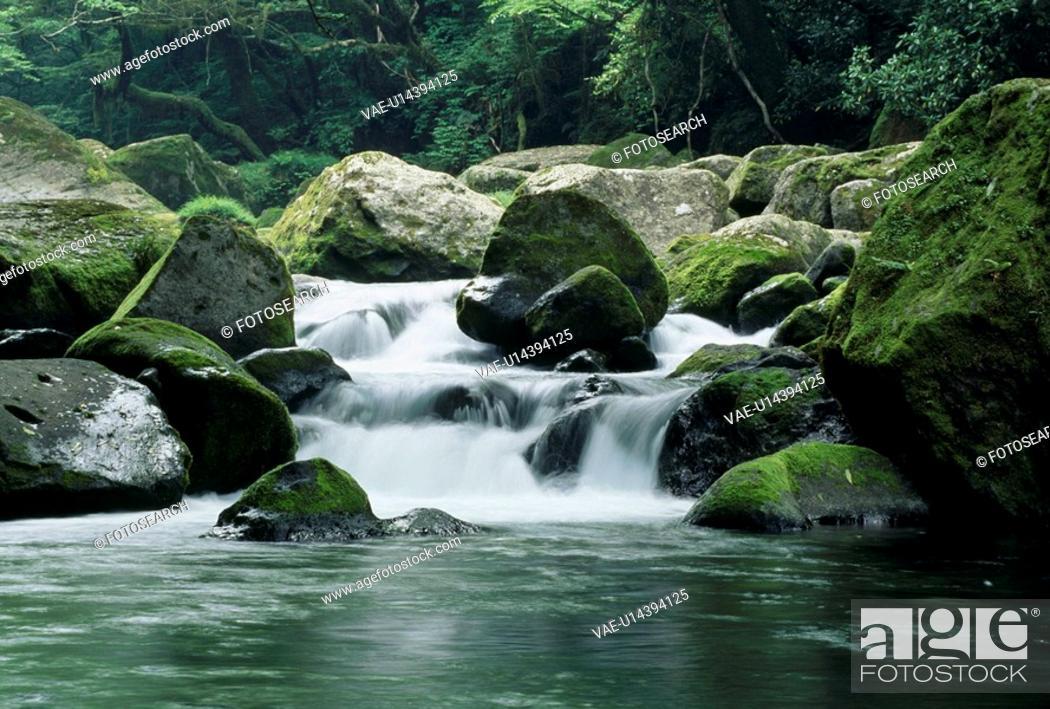 Stock Photo: Mountain Stream.