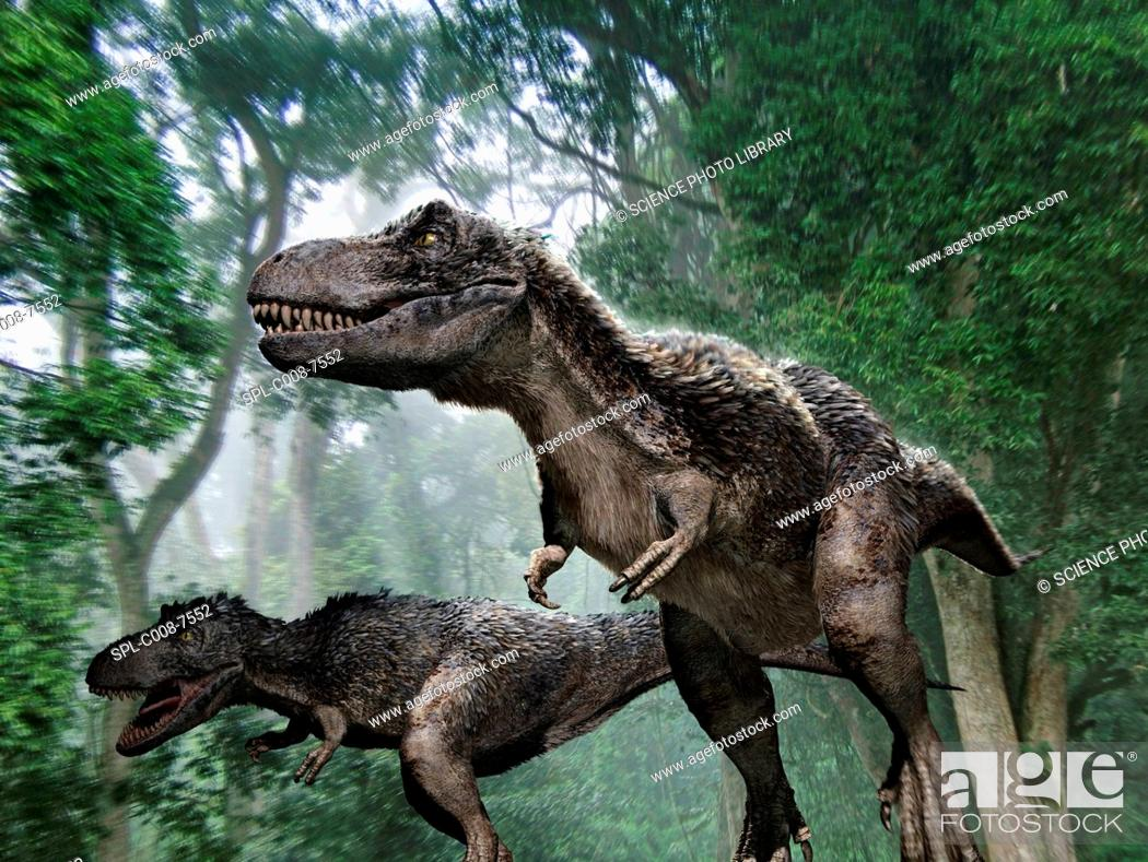 Stock Photo: Tyrannosaurus rex dinosaurs. Artwork of a pair of Tyrannosaurus rex dinosaurs hunting prey in a forest. Some theories say that this dinosaur had feathers and.