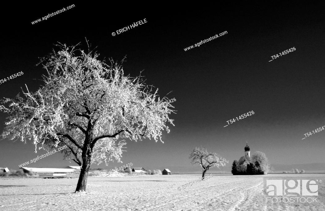 Stock Photo: Wintermorning in Bavaria.