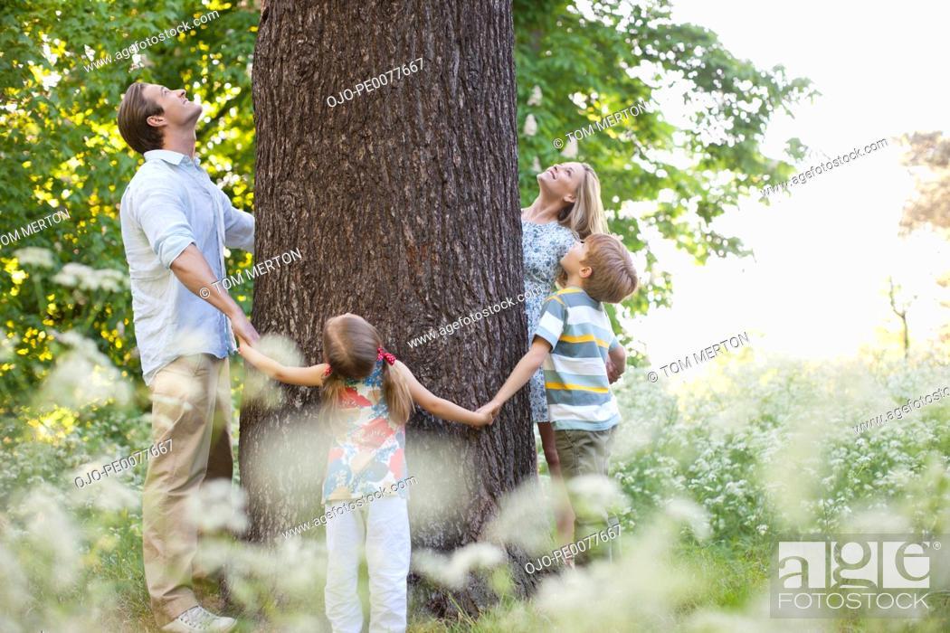Stock Photo: Family standing in circle around tree.