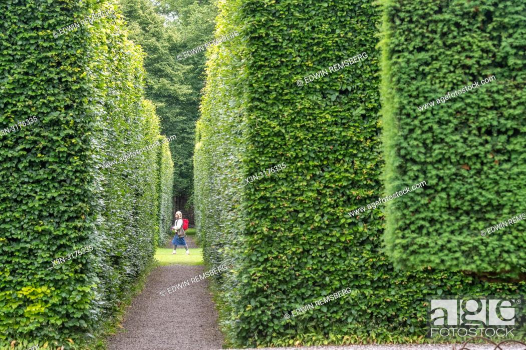 Stock Photo: Person at the end of pathway among trees, Levens Hall , Kendal, Cumbria , UK.