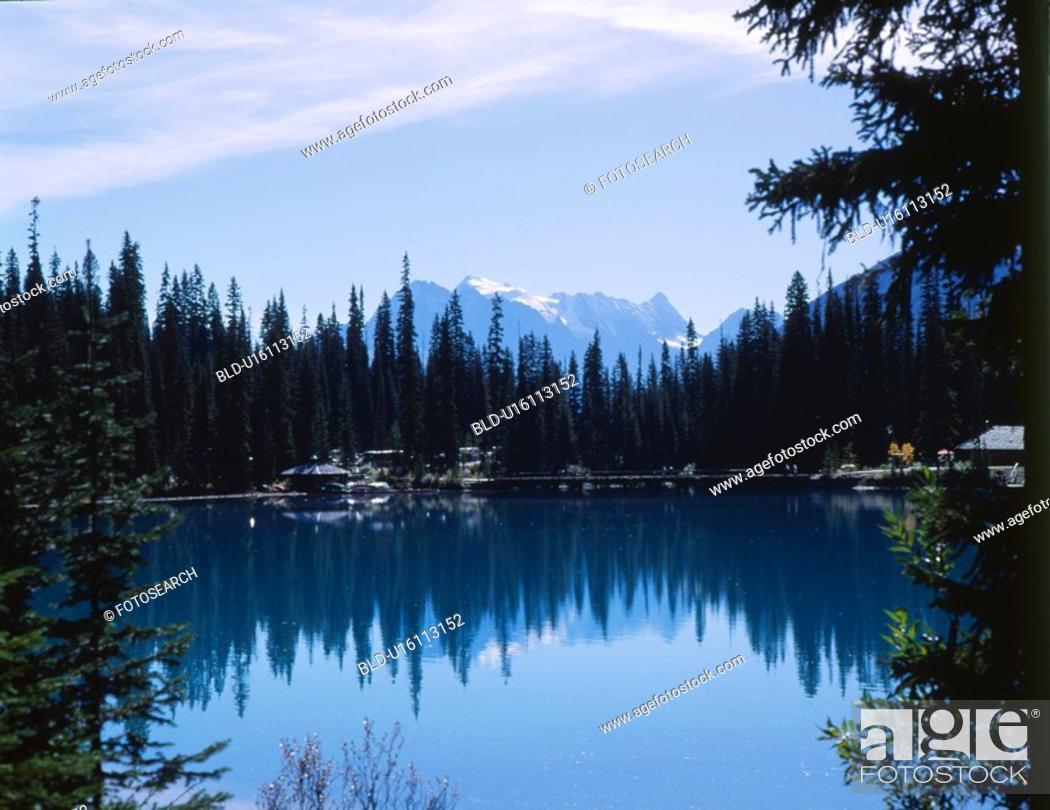 Stock Photo: tree, nature, sky, mountain, scene, forest, landscape.