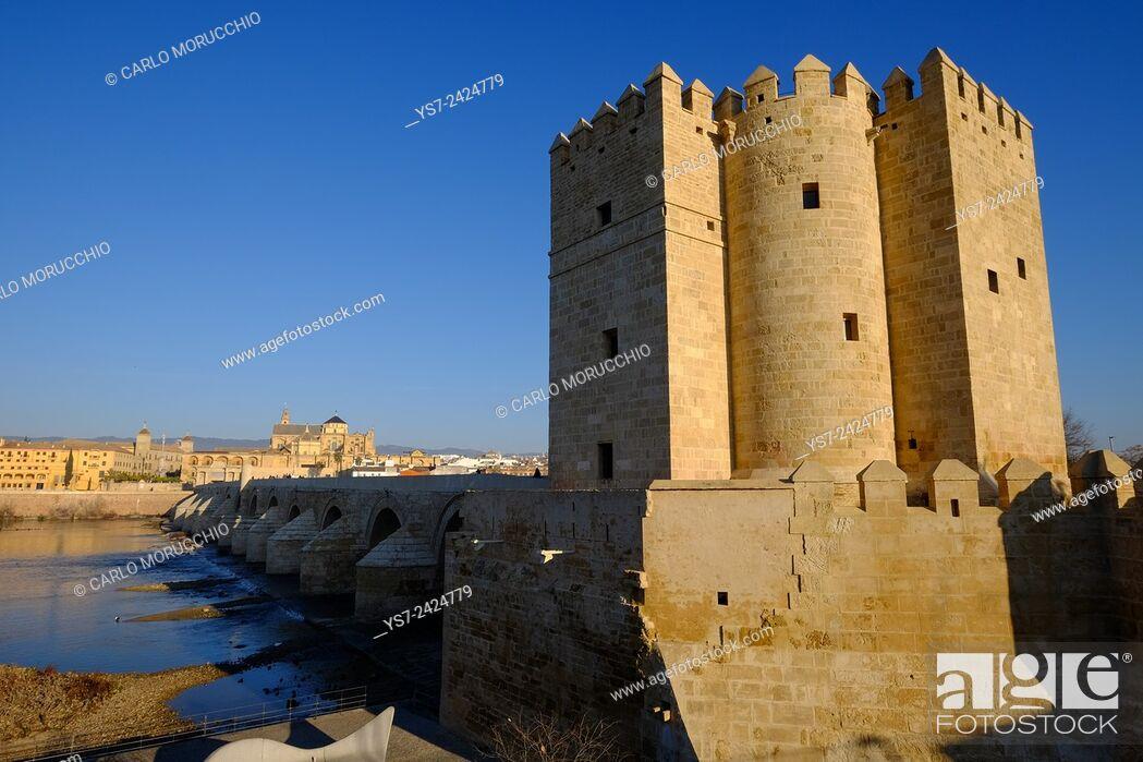 Stock Photo: Calahorra Tower and the Roman bridge, Cordoba, Andalucia, Spain, Europe.