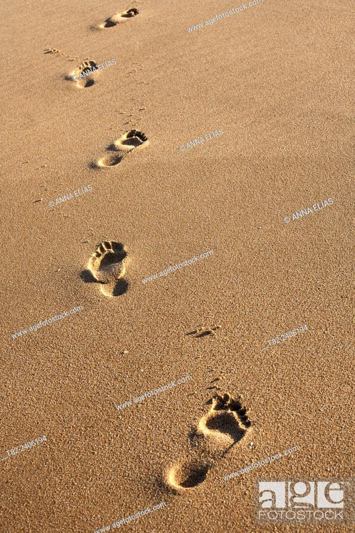 Stock Photo: Footprints on the sand.
