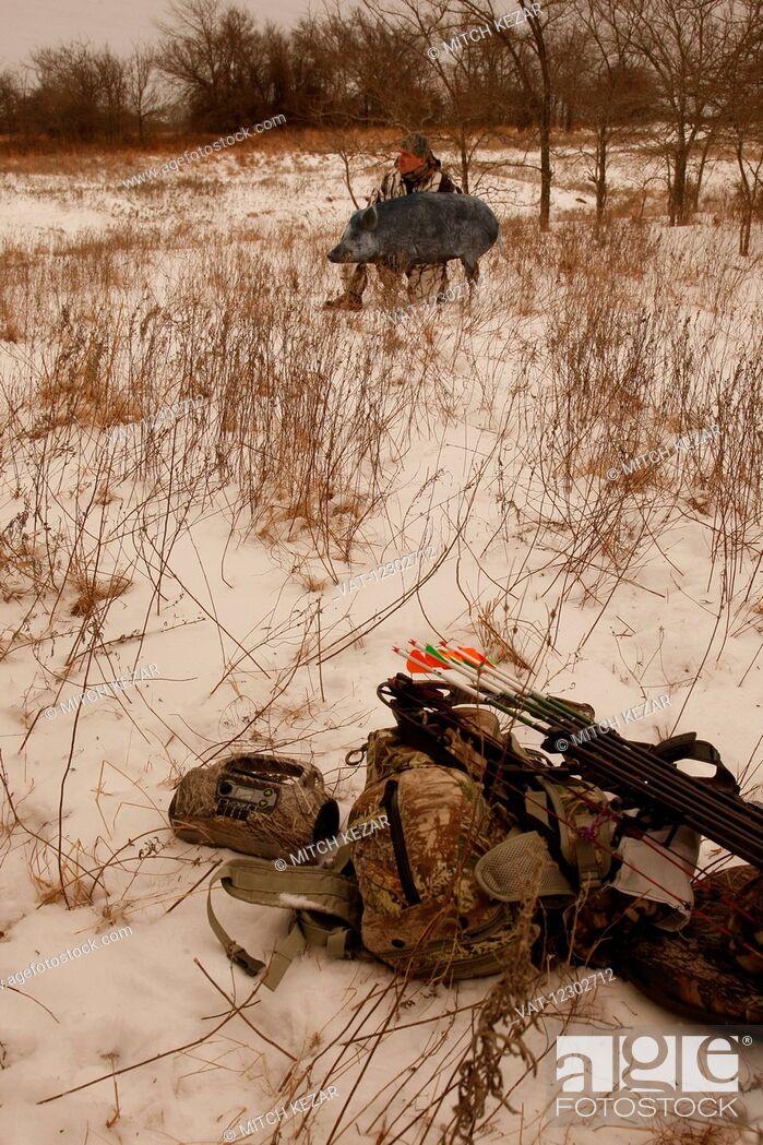 Imagen: Feral Hog Bowhunter In Winter.