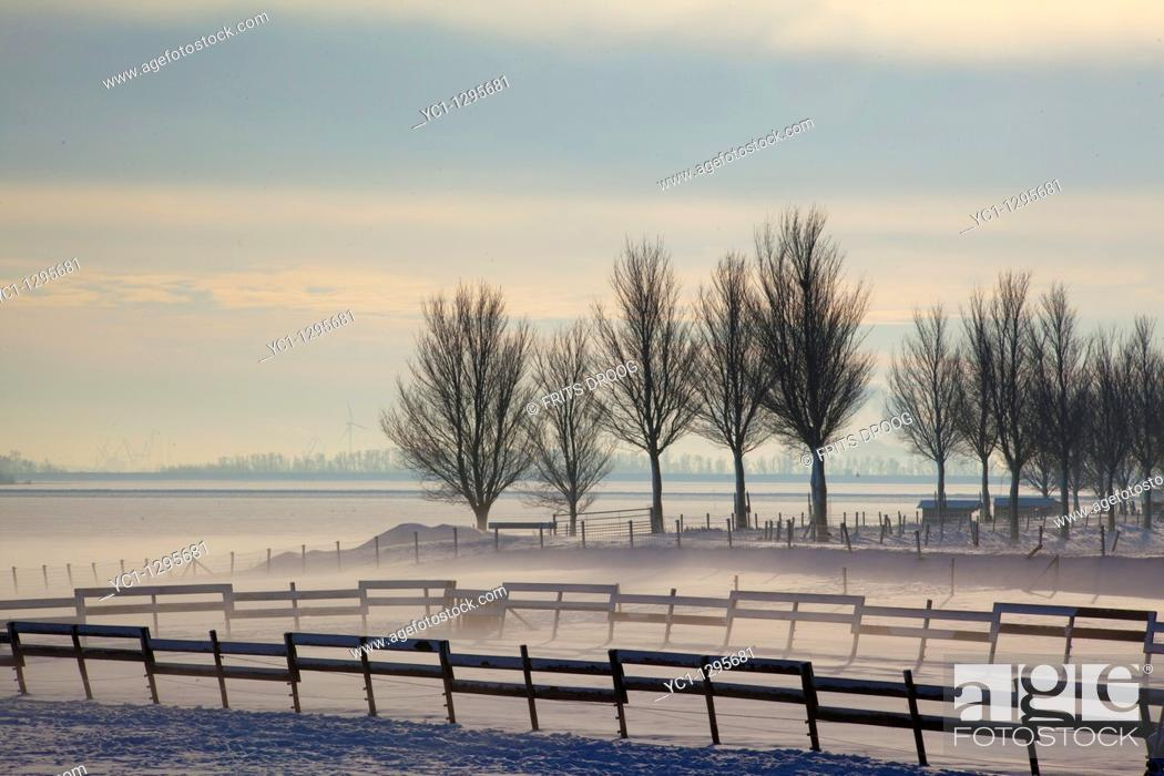 Stock Photo: winter in Holland 2010.