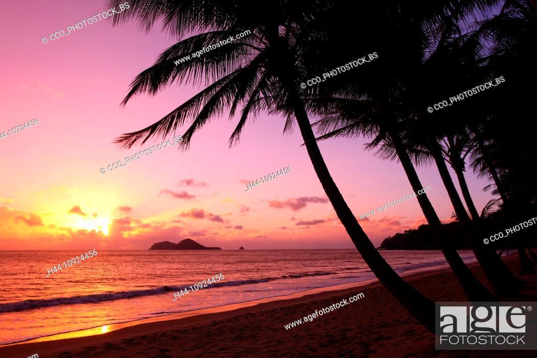 Stock Photo Ellis Beach Tropics Seas Coast Palms Camping Site Sea Waves Wind Sky Sun Vacation Holidays Rest Recover Queensland