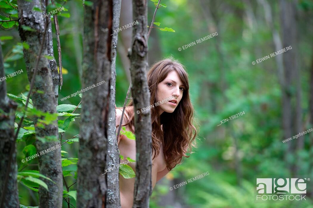Stock Photo: Nude Female model peeking from tree in forest near Lewiston Maine USA.