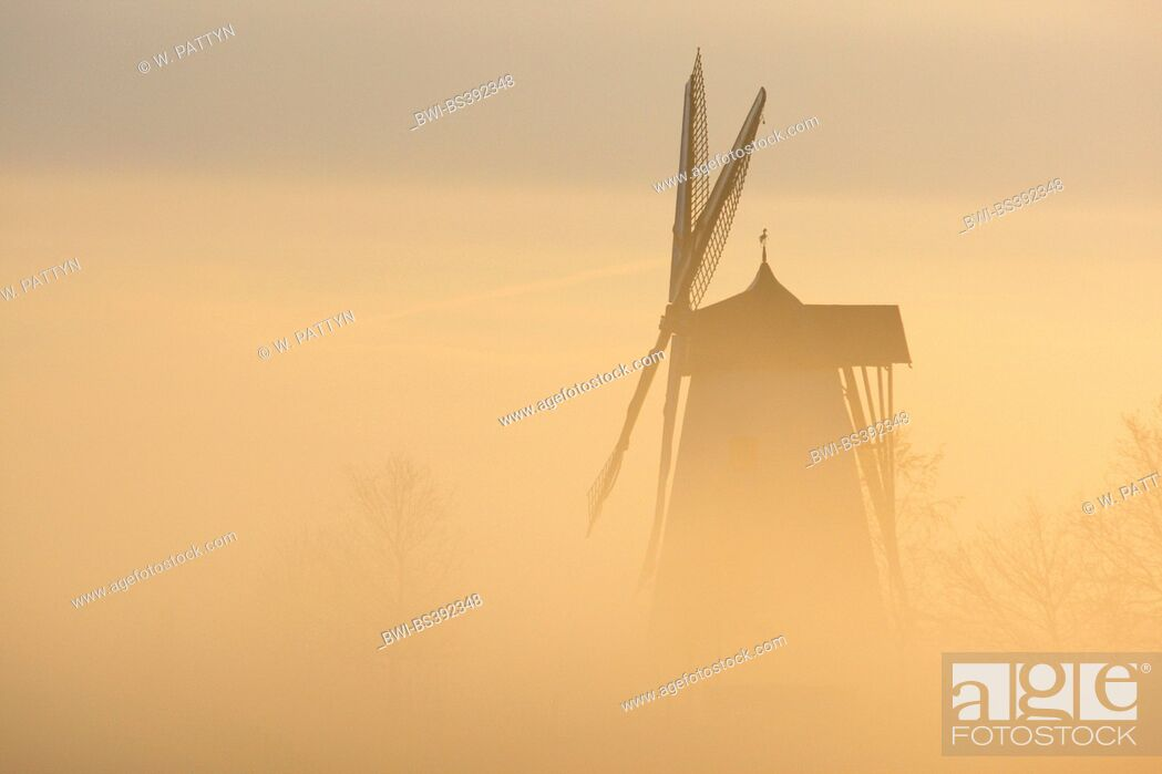 Imagen: Windmill in the mist at sunrise, Belgium, Ardennes.