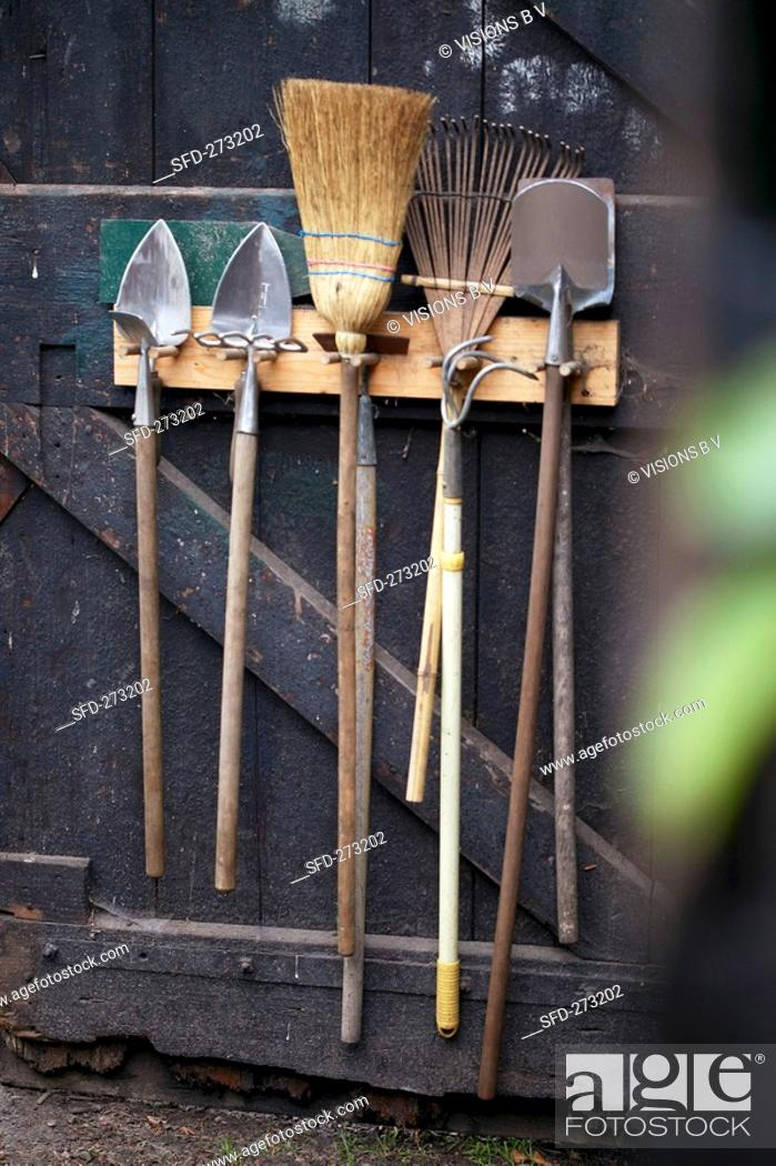 Stock Photo: Garden tools on wooden door.