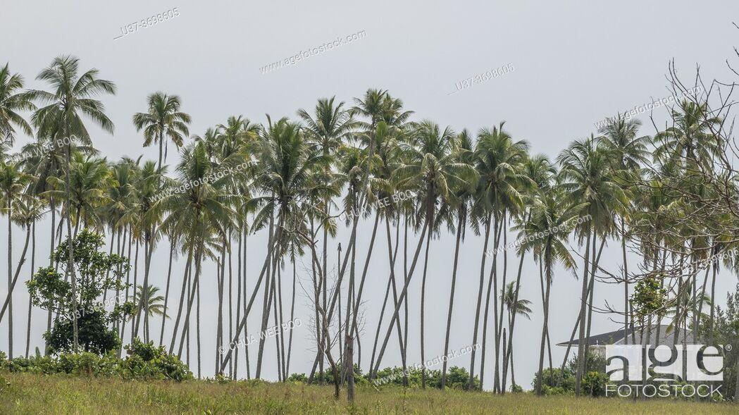 Photo de stock: Garden Beach, Telaga Air, Matang, Sarawak, East Malaysia.
