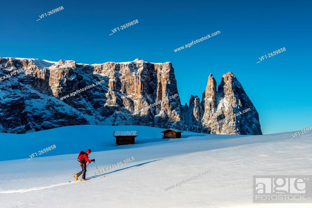 Photo de stock: Alpe di Siusi/Seiser Alm, Dolomites, South Tyrol, Italy. Cross country skiing in the morning on the Alpe di Siusi/Seiser Alm.