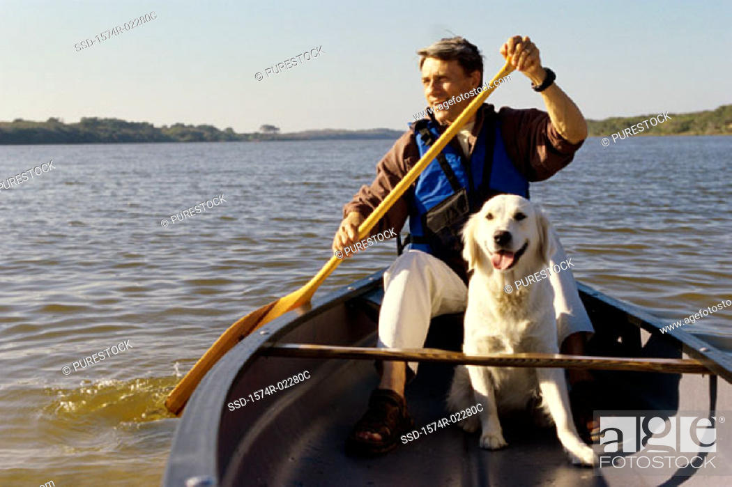Stock Photo: Mid adult man in a row boat with his dog.