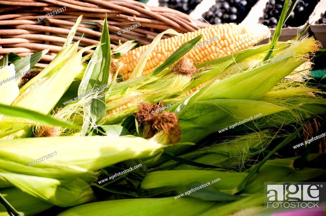 Stock Photo: scene on a farmers market in autumn.