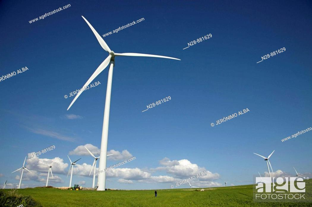 Stock Photo: Grain field and wind turbines, Tarifa. Cadiz province, Andalusia, Spain.