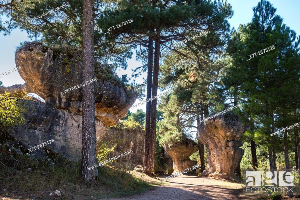 Imagen: Eroded limestone outcrops in La Ciudad Encantada, The enchanted City, Park in the Serrania de Cuenca, Castilla-la Mancha, Central Spain.