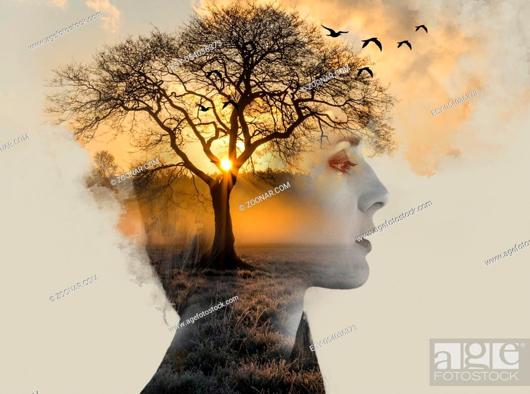 Stock Photo: double exposure, beautiful woman with tan fused with a sunset and a lonely tree, loneliness concept.