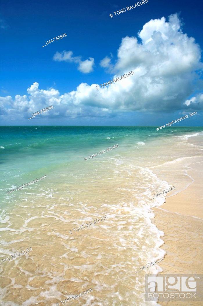Stock Photo: Tropical caribbean clean beach.
