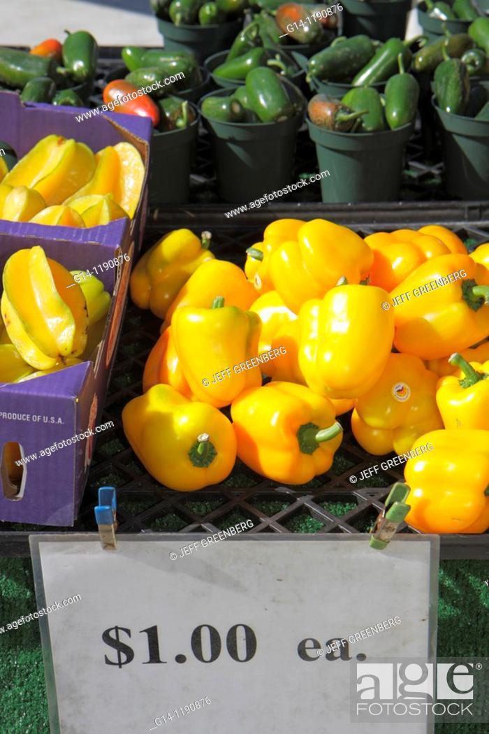 Florida, West Palm Beach, GreenMarket, green farmers market