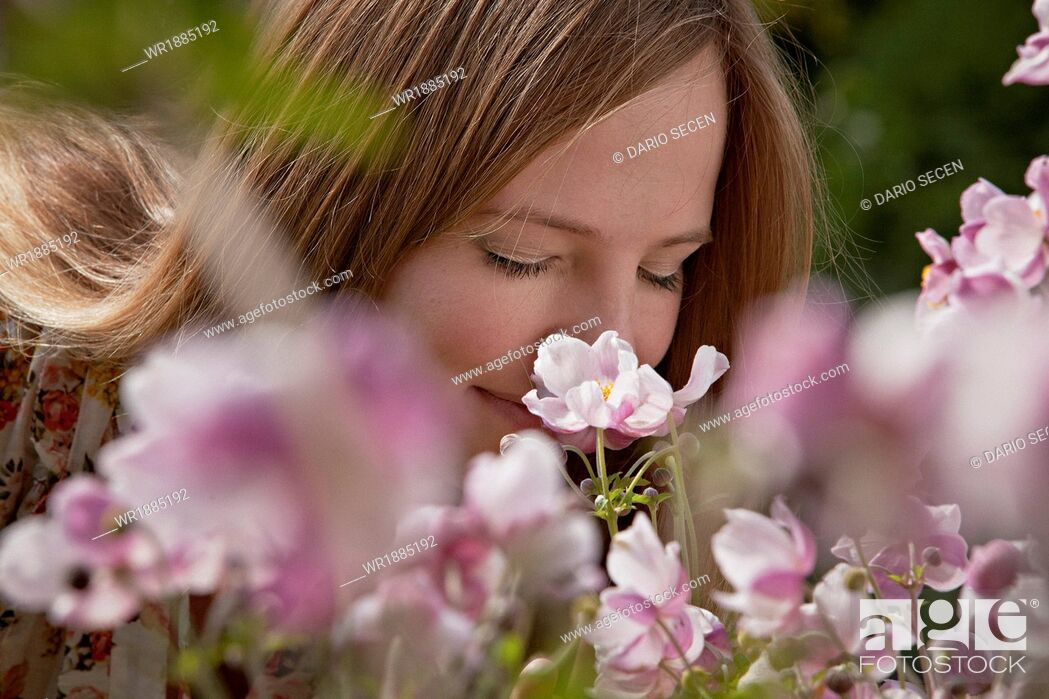 Stock Photo: Mid adult woman smelling flowers, Munich, Bavaria, Germany.