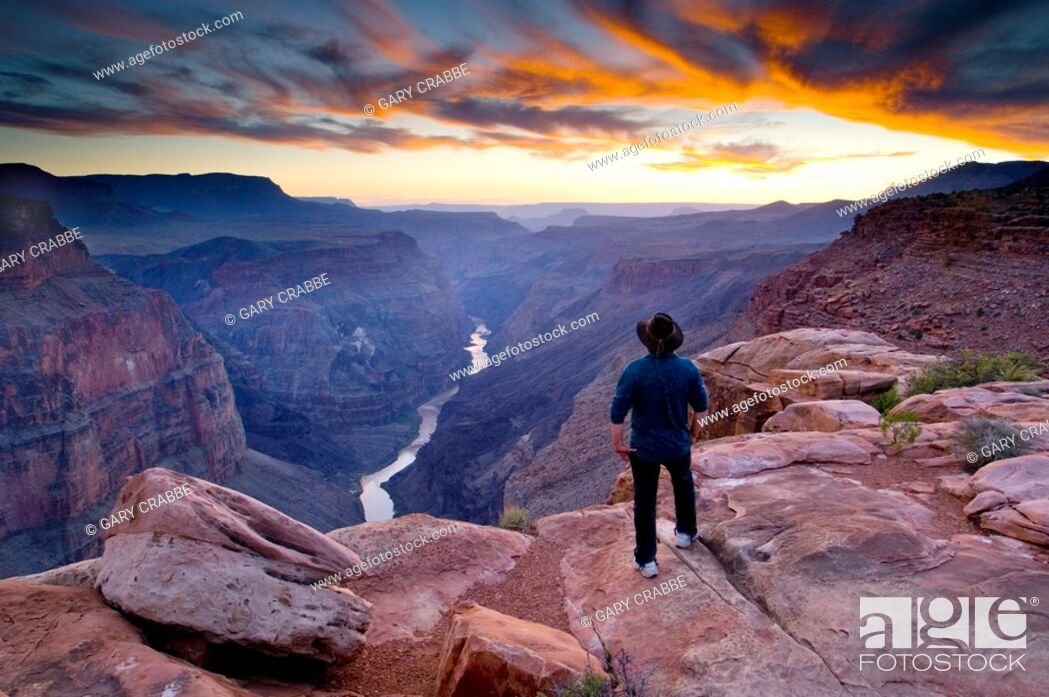 Stock Photo: Person standing at the edge of steep rugged cliffs above the Colorado River at sunset, Toroweap, Grand Canyon National Park, Arizona.