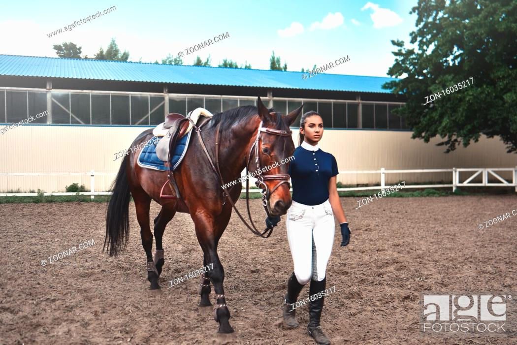 Imagen: Young woman leads her horse to training and preparing it for the races.
