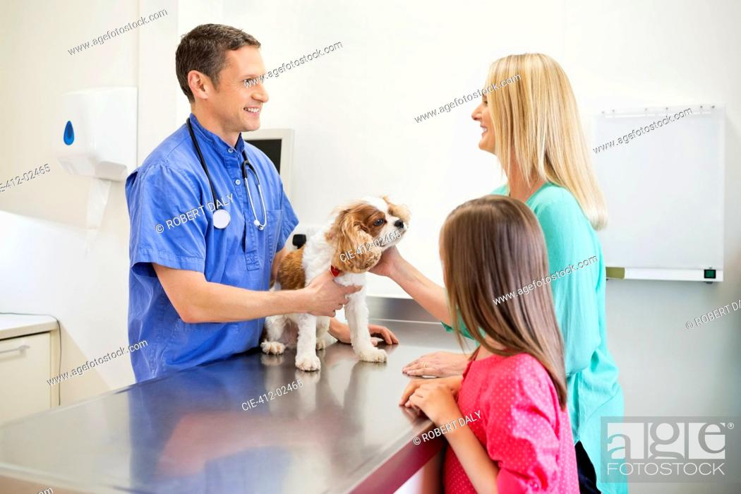 Stock Photo: Veterinarian and owners examining dog in vet's surgery.