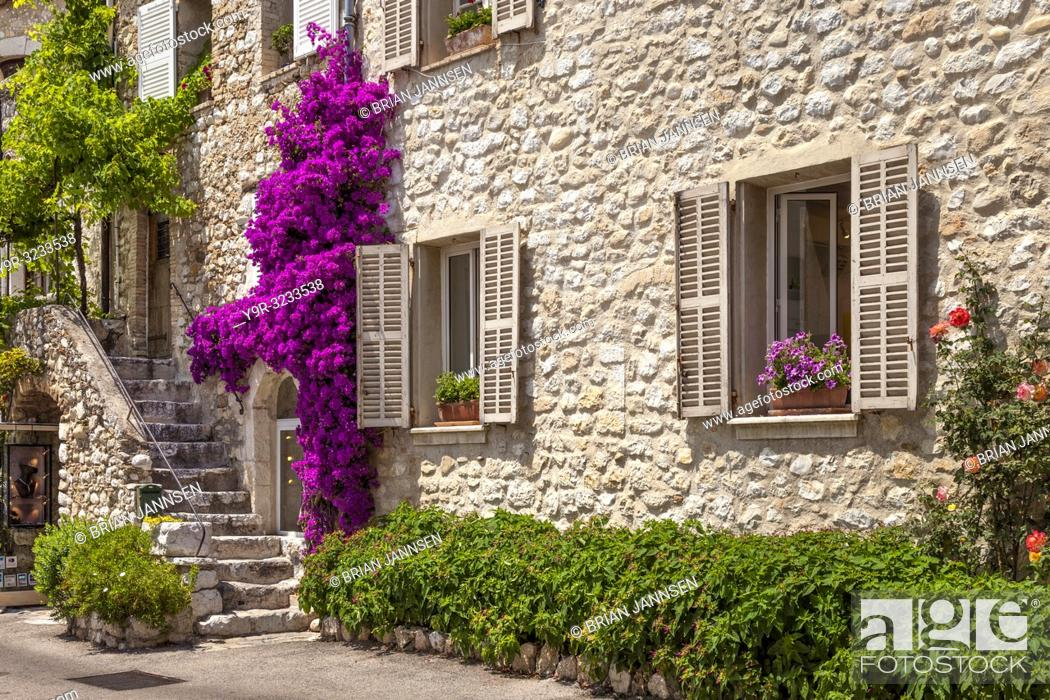 Stock Photo: Flowering bougainvillea, stone stairs and entrance to medieval home in St Paul de Vence, Provence, France.