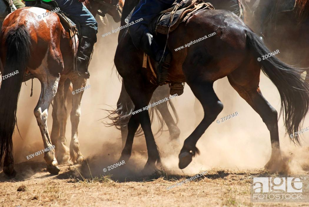 Stock Photo: Kokpar - traditional nomad horses competitions.