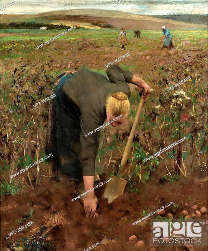 Stock Photo: Clausen George - Gathering Potatoes - British School - 19th Century.
