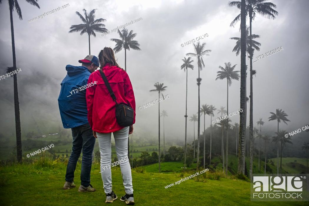 Stock Photo: The Cocora Valley (Spanish: Valle de Cocora) is a valley in the department of QuindÃo, just outside the pretty little town of Salento.