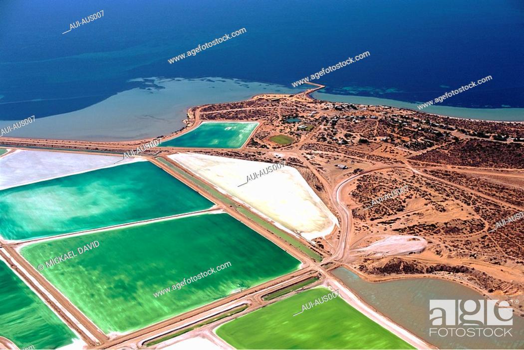 Stock Photo: Australia - Western - Shark Bay.