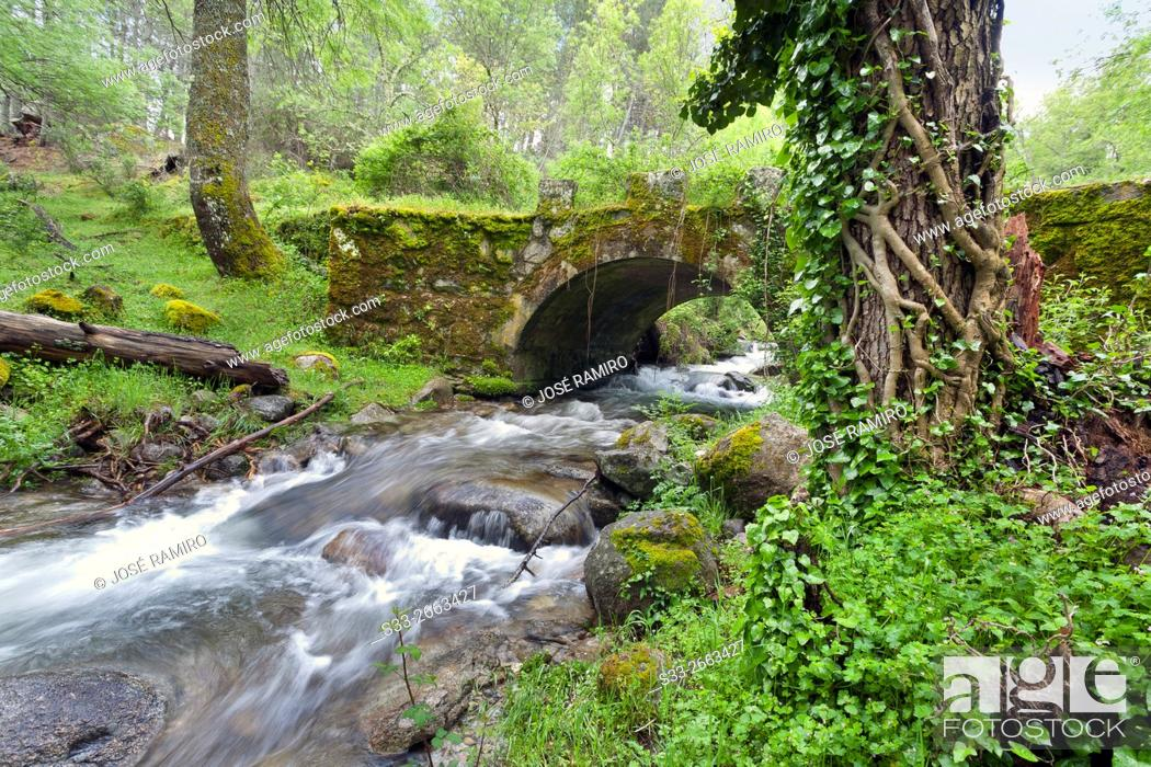 Stock Photo: Bridge over Solana Toro stream in the Sierra de Gredos. Avila. Castilla Leon. Spain. Europe.